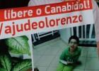 Pela primeira vez, Brasil libera uso controlado de remédio a base de maconha