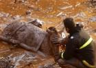 Equipe de resgate ainda procura 28 pessoas em meio à lama em Mariana