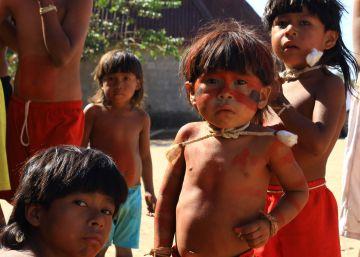 Impeachment abre novo capítulo no conflito da área indígena mais desmatada do país