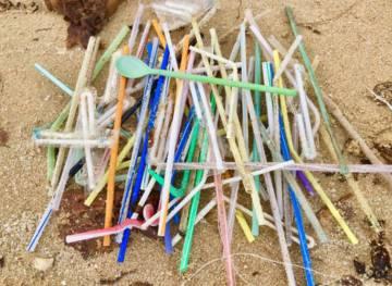 Canudos de plástico recolhidos em praia da Austrália
