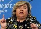 La Junta aprueba el Consejo del Olivar con 26 miembros