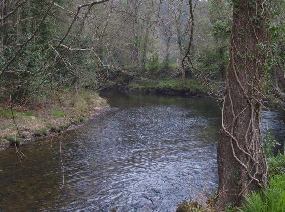 El río Landro, Lugar de Importancia Comunitaria situado en el término municipal de Viveiro, en A Mariña.  ANXO IGLESIAS