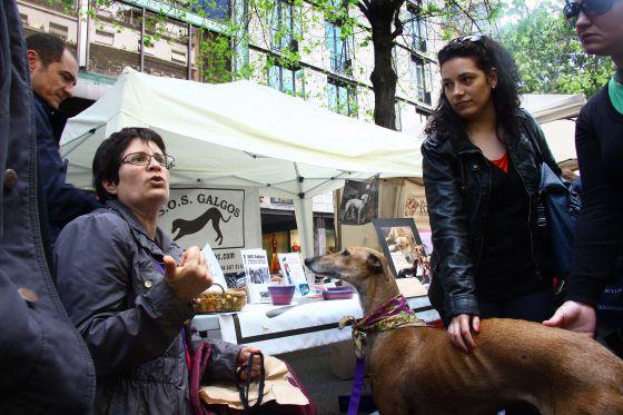 Isabel Vilaburgués, de la organización sin ánimo de lucro S.O.S. Galgos, en el Día de Sant Jordi de Barcelona