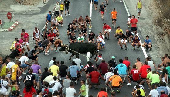 Los vecinos de L'Aldea cortaron el tráfico de la N-340 el verano pasado con un 'bou'.