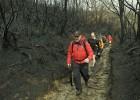 El Xurés sufrió 2.200 incendios en los últimos 10 años