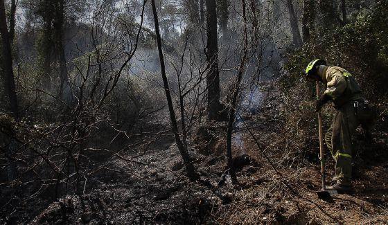 Un brigadista trabaja para acotar el perímetro del incendio de Cortes de Pallás.