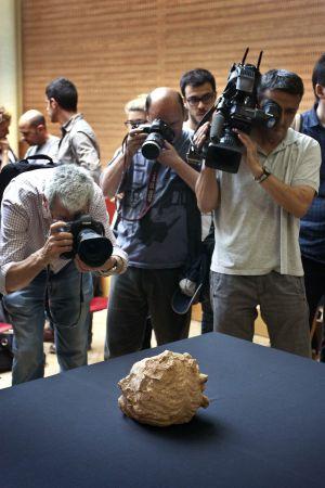 La testa romana durante su presentación a los medios. / SALVADOR FENOLL