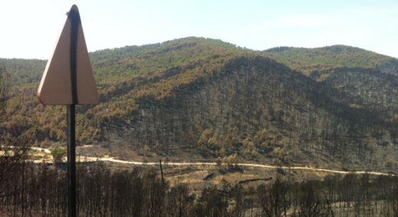 Montes del término de Andilla después del incendio.