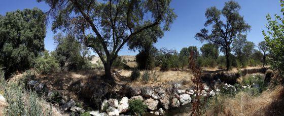Imagen de los terrenos de Tres Cantos en los que se ampliaría el Soto de Viñuelas.