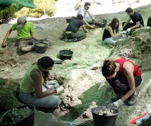 Varios participantes en la excavación de Torrejón de Velasco, la pasada semana.