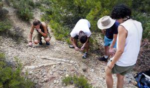 Otro aspecto del yacimiento con los enormes huesos medio enterrados.