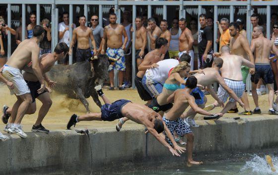 Los festeros se lanzan al agua para esquivar al toro en el puerto de Denia.