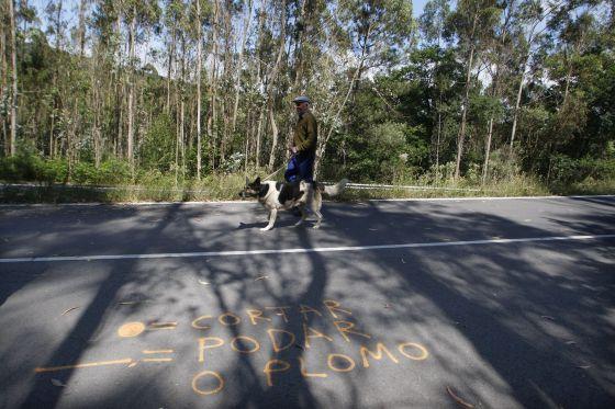 Señalizaciones pintadas en rojo al pie de una carretera en Cerdedo.