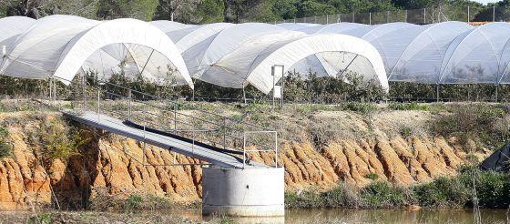 Invernadero regado con un pozo en la zona de Moguer y Palos (Huelva), próxima a Doñana.
