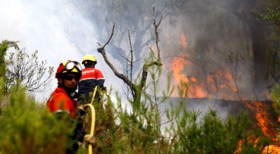 Dos bomberos con una manguera en el incendio declarado hoy en el término de Torre Manzanas.