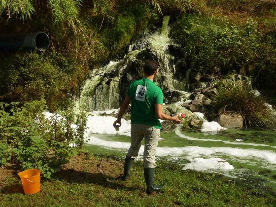 Vista del vertido en el arroyo del Partido en Almonte (Huelva).