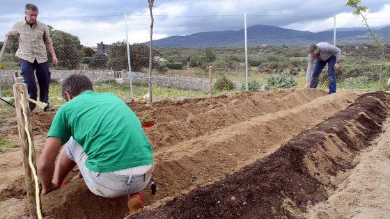 Tres hombres preparando la tierra de un huerto escolar
