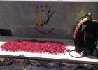 Detenidos en Cadaqués dos furtivos con 12,5 kilos de coral rojo