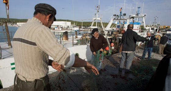 Trabajadores preparan los aparejos en el puerto de Barbate.