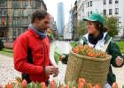 Miles de tulipanes preludian la junta general de Iberdrola
