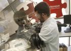 Ikerbasque recibe 6,2 millones para la contratación de 50 investigadores