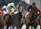 La Zarzuela se queda sin carreras de caballos