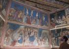 Pedralbes luce como hace 669 años