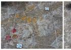 Destrozados huevos de dinosaurio en Coll de Nargó