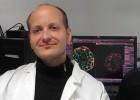 Un mecanismo de contacto celular provoca el cáncer