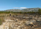 Un incendio en L'Ametlla de Mar quema 40 hectáreas de vegetación