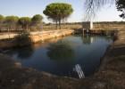El Gobierno entrega los primeros permisos para regantes de Doñana