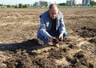 Se cierra en falso el misterio de la peste que inundó Barcelona