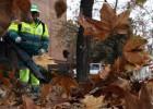 Madrid batalla contra las hojas que han caído de golpe y 3 meses tarde