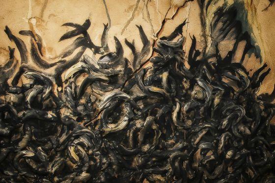 Anguilas, manifiesto inconveniente