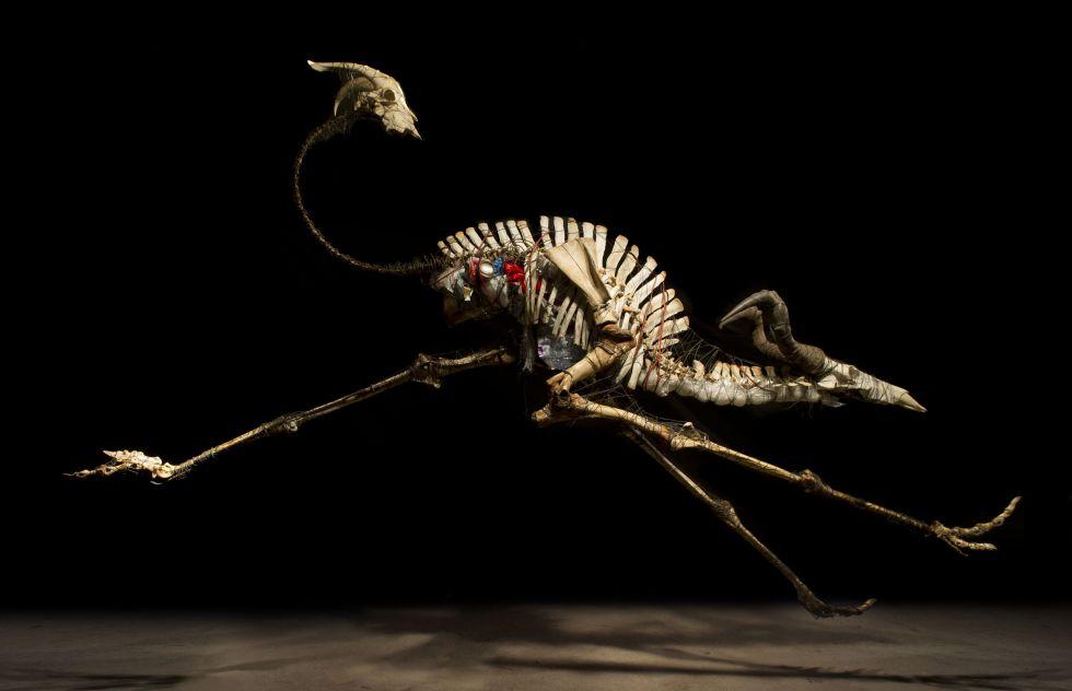 'Antrílope' (2012), una de las obras de Álvaro Soler Arpa que se exhibirán en la T1.
