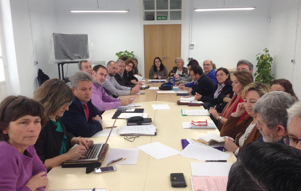 Consejo Escolar de Alicante que ha aprobado elimimar el distrito único.