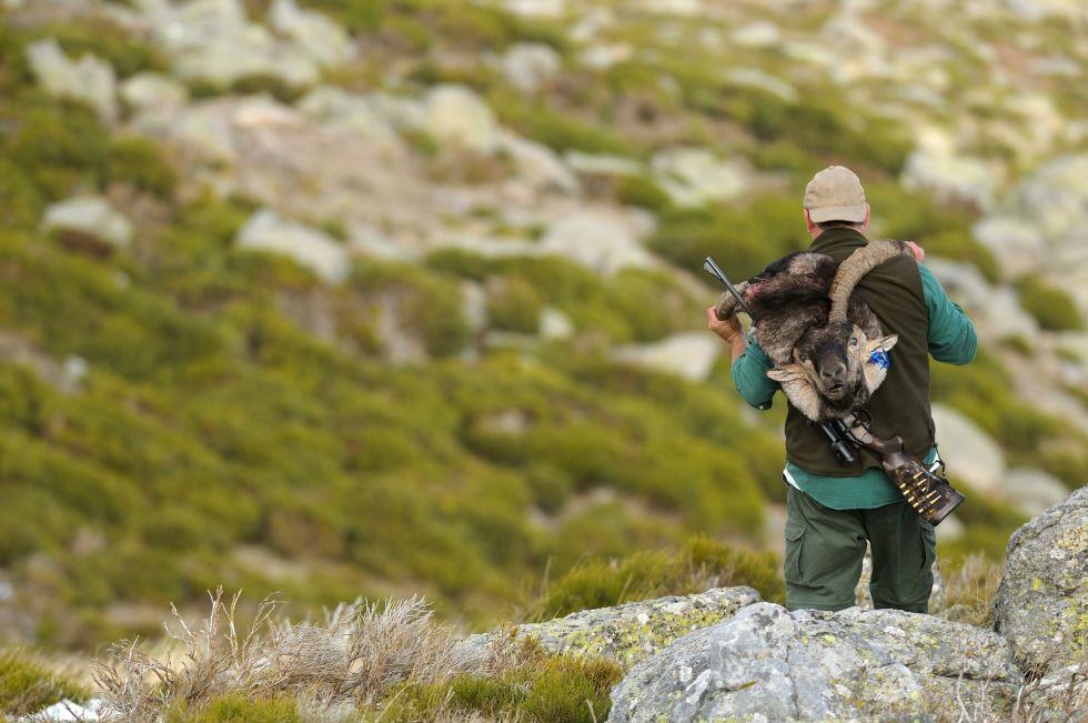 Un cazador porta una cabeza de cabra montés en La Pedriza, en 2014.