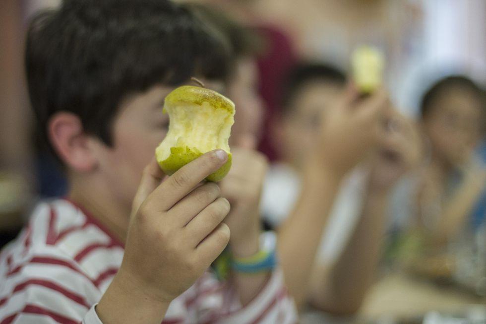 Un alumno de primaria en un comedor escolar.