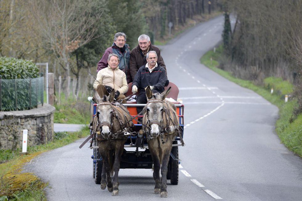 Los cuatro jubilados alaveses en un descanso del entrenamiento para llegar a El Rocío