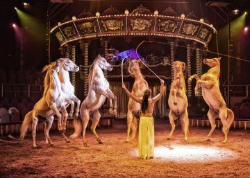 Carmena quiere trocear el circo Price y entregar parte a asociaciones sociales