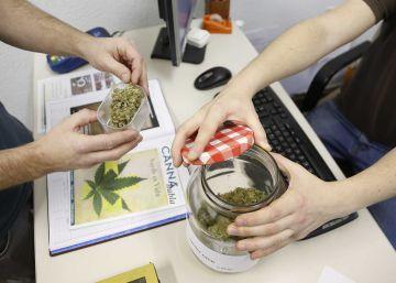 San Sebastián podrá regular los clubes de cannabis