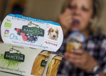 Yogures con vida de perro