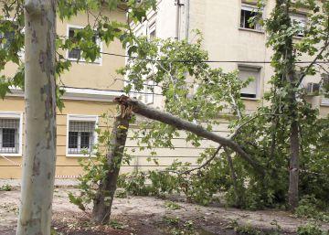 Interior deniega a Aranjuez 537.000 euros de ayuda por el tornado