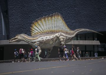 La gran aventura del feroz dinosaurio nadador