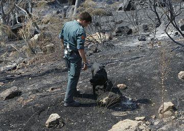 La región registra el menor número de incendios forestales desde 2011