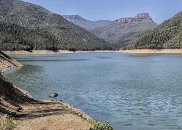 Los agricultores avisan sobre la pérdida de cosechas por la sequía