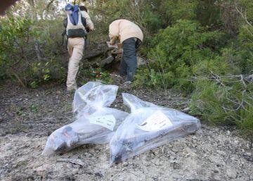 La Generalitat identificará a los desaparecidos del franquismo
