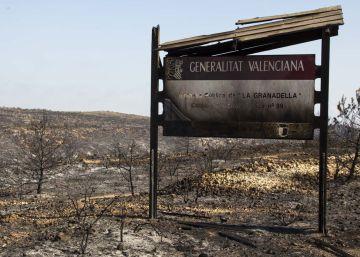 Los incendios de Alicante: 1.136 hectáreas quemadas