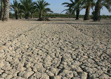 2016, el segundo año más seco en la Comunidad Valenciana