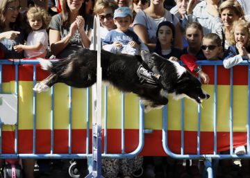 La policía muestra sus especialidades en el paseo del Prado